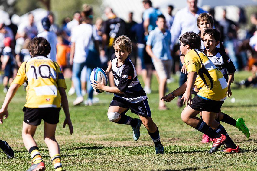 0011_ogazon-torneo-sur-ciencias-rugby_9241