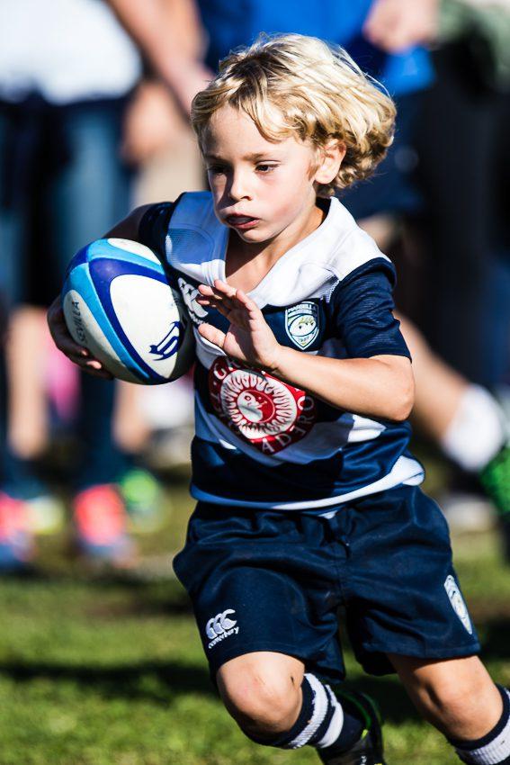 0018_ogazon-torneo-sur-ciencias-rugby_1719
