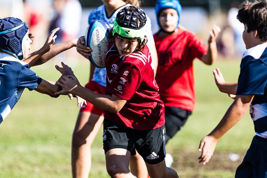 0029_ogazon-torneo-sur-ciencias-rugby_2125
