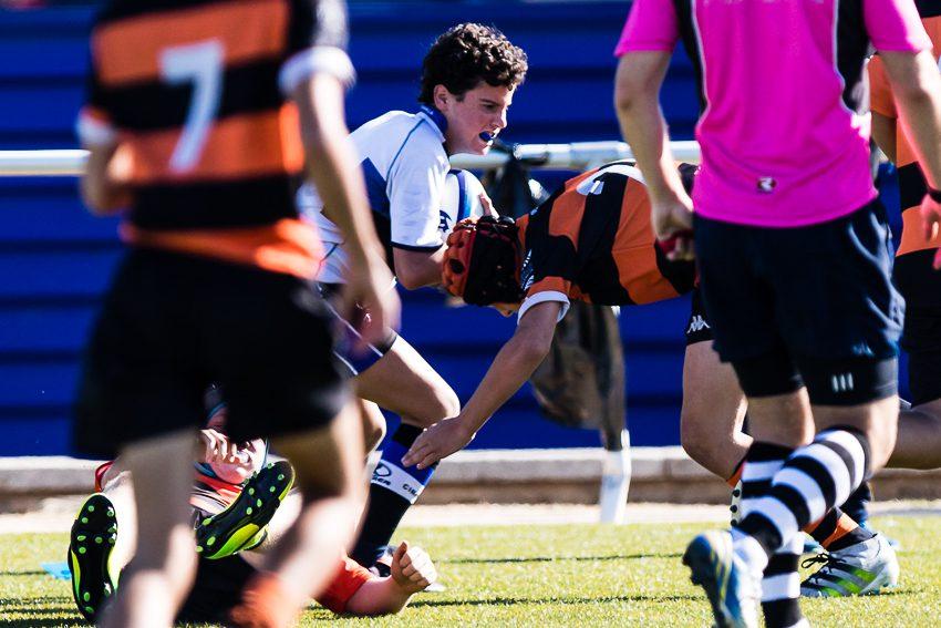 0034_ogazon-torneo-sur-ciencias-rugby_2499