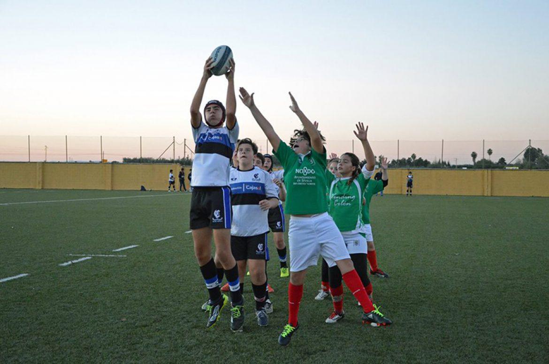 Sub14. Doble victoria de Ciencias Cajasol