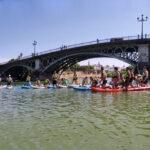 ciencias rugby sevilla paddle surf
