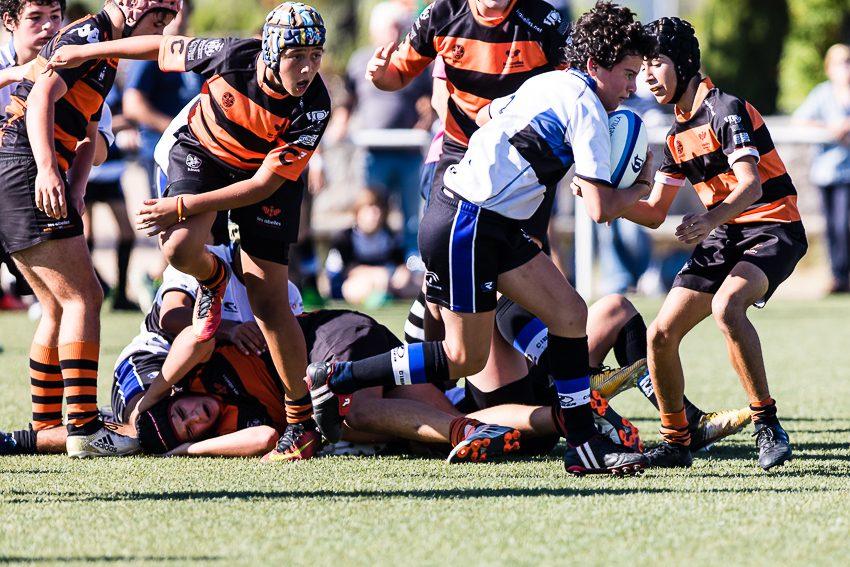 0001_ogazon-torneo-sur-ciencias-rugby_2791
