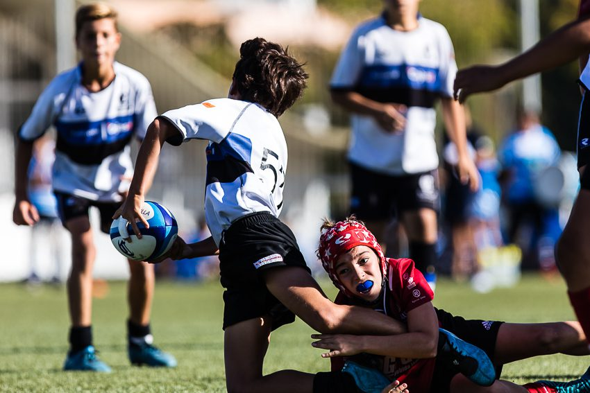 0002_ogazon-torneo-sur-ciencias-rugby_8470