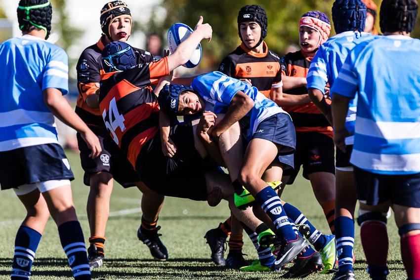 0005_ogazon-torneo-sur-ciencias-rugby_8829