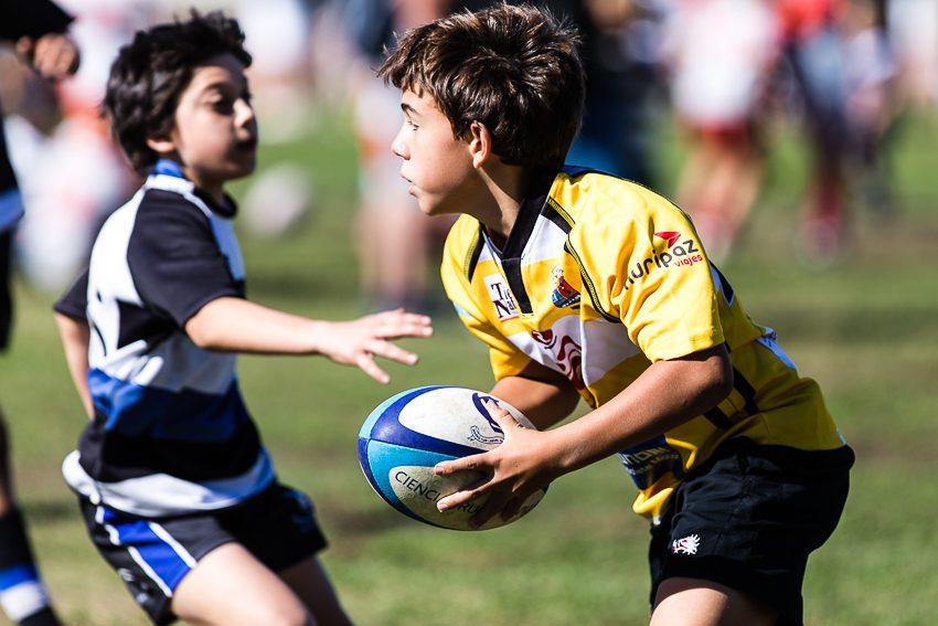 0012_ogazon-torneo-sur-ciencias-rugby_9251