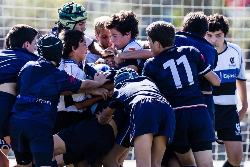 0014_ogazon-torneo-sur-ciencias-rugby_9387