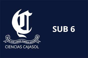 CIENCIAS CAJASOL SUB 6